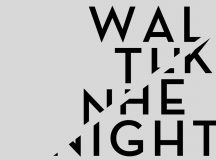 VALERIO VAUDANO – Walk The Night